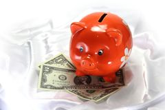 Pig piggy bank Royalty Free Stock Photo