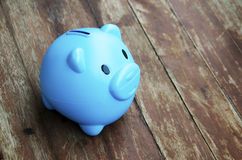 Pig piggy bank Royalty Free Stock Photos