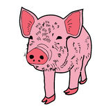 Pig Piggy boar icon cartoon design abstract illustration animal Royalty Free Stock Images