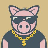 Pig piggy character. With sunglasses, vector illustration royalty free illustration