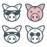 Pig piggy faces. With sunglasses, vector illustration royalty free illustration