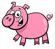 Pig or piglet character cartoon illustration. Cartoon Illustration of Funny Pig or Piglet Farm Animal Character Stock Photography