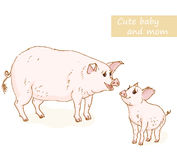 Pig and piglet. Cute animals family with mom and baby. Vector illustration Royalty Free Stock Photos