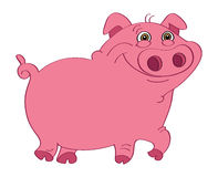 Pig pink Stock Photography