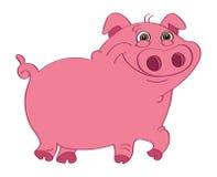 Pig pink. Cartoon illustration of a pink pig Stock Photography