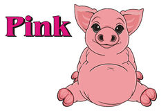 Pig is pink color Royalty Free Stock Photography