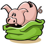 Pig In A Poke Stock Photos