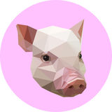 Pig in a polygon style. Fashion illustration of the trend in sty. Le on a pink background. Farm animals Stock Photos