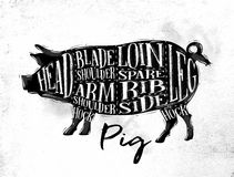 Pig pork cutting scheme Royalty Free Stock Image