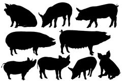 Pig pork silhouette  set. For multipurpose use like back ground, wallpaper, pattern, sticker, peeler and more Royalty Free Stock Photo