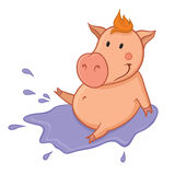 Pig in puddle Royalty Free Stock Photography