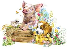 Pig. puppy dog. fox. ducklings. chick. watercolor cute farms animal collection stock illustration