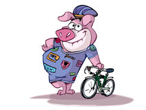 Pig ready to cycle Stock Image