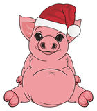 Pig in red hat Royalty Free Stock Images