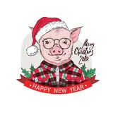 Pig in a red plaid shirt, in a Santa`s red cap . Marry Christmas - lettering quote. Christmas card, poster, t-shirt vector illustration