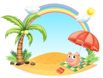 A pig relaxing at the beach Stock Images