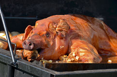 Pig roast Royalty Free Stock Photography