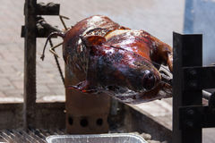Pig roast Stock Images