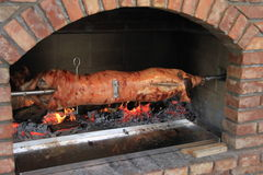 Pig roasting on a spit. Image of a pig roasting on a spit Stock Photos