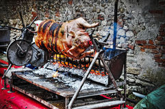 Pig roasting on the spit Stock Photos