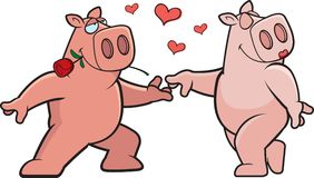 Pig Romance Royalty Free Stock Images