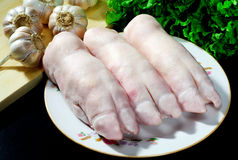 Pig's feet Stock Photography