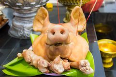 Pig's head chopped off on tray Royalty Free Stock Photo