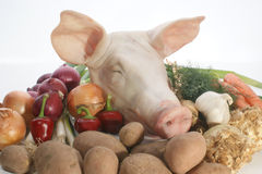 Pig's head with fresh organic vegetable Stock Photo