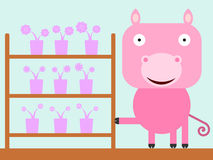 Pig's shop Royalty Free Stock Images