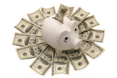 Pig safe box. White pig safe box with dollars Royalty Free Stock Photo