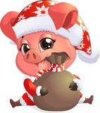 Pig in santa costume Royalty Free Stock Photography