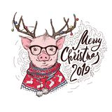 Pig in a Santa`s red costume and in a deer mask with a glasses. Marry Christmas - lettering quote. Christmas card stock illustration