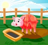 Pig sausage Stock Photography