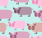 Pig seamless pattern. Background of animals. A herd of pigs Farm Royalty Free Stock Photo