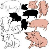 Pig Set. 06 - colored hand drawn illustration as vector Stock Photography