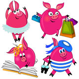 Pig set  illustration.cute animal isolated Stock Photos