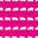 Pig shadows silhouette in lines pink pattern eps10 Royalty Free Stock Images