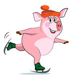 Pig on skates. Royalty Free Stock Images