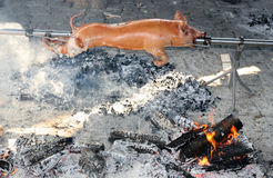 Pig on a skewer Royalty Free Stock Images