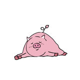 Pig sleeping Stock Photography