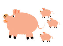 Pig with small pig Stock Images