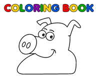A pig smiling for coloring Stock Images