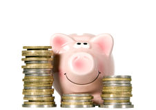 Pig is smiling and standing near money Royalty Free Stock Photo