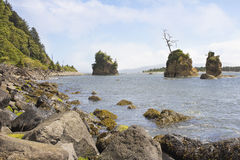 Pig and Sow Inlet in Garibaldi Oregon Royalty Free Stock Photo