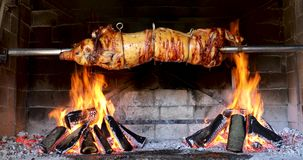 Pig spinning on spit - cooking piglet in firewood grill stock video footage