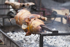 Pig on a spit Stock Image