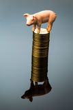Pig on stack of coins Stock Image