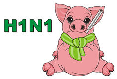 Pig and stam h1n1 Stock Photography