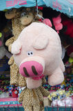 Pig stuffed animal Royalty Free Stock Photos
