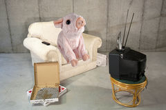 Pig Sty. Pink pig sitting on an easy chair watching tv with empty pizza boxes Royalty Free Stock Images